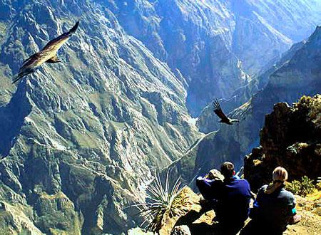 Colca Canyon Tour