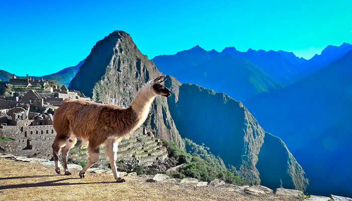 Machu Picchu Tours Packages