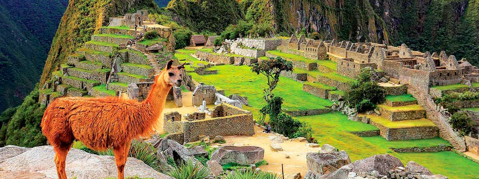 Top 5 Best Tour Packages to Machu Picchu