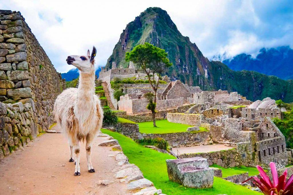 Southern Peru Trip